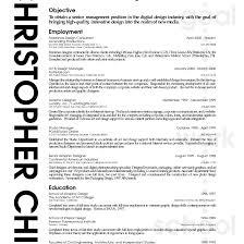 Graphic Design Resume Example Designer In Sample Bunch Ideas Of