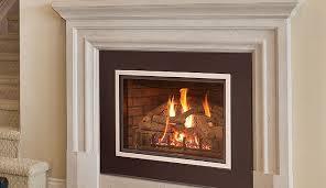 real fyre dvi gas fireplace insert