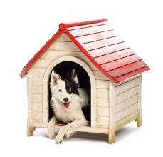 air conditioning dog house. air conditioning dog house