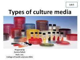 Types Of Culture Media