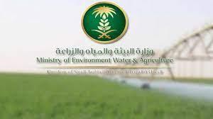 صحيفة صدى | وزارة البيئة والمياه والزراعة تعلن عن وظائف شاغرة