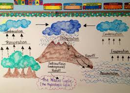 water cycle essay we can do your homework for you just ask keeleygriffin5thgrade weebly com