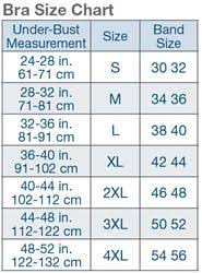 Bra Size By Band And Cup Google Search Bra Size Charts