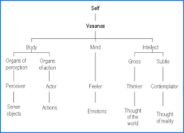 Body Mind Intellect Chart A Journey From Ignorance To Bliss Chapter Xii