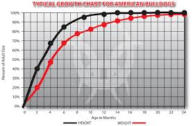 American Bulldog Puppy Growth Chart American Bulldog Weight Charts And Growth Chart Head Size