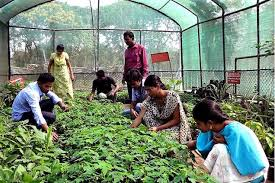 Colleges Of Agriculture Top 10 Best Agriculture Colleges In India Most Popular World Blaze