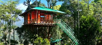Dream Catcher Kerala Awesome Category Munnar Dream Catcher Tree House Kerala Tree House