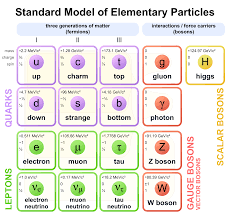 Subatomic Particles Chart Answers Elementary Particle Wikipedia