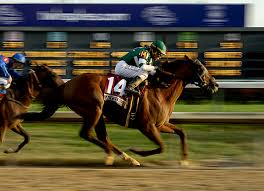 2014 Breeders Cup Charts Accelerate Grants Sadler First Breeders Cup Winaccelerate