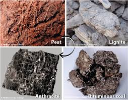 chapter 9 sedimentary rocks physical