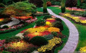 flowers for garden. Flowers-garden-hd-wallpapers-1.jpg 1,920×1,200 Pixels Flowers For Garden