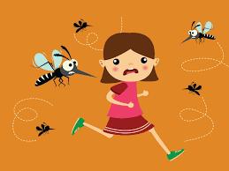 Difendersi dalle zanzare si può: ecco come - Bianco e Bruno, Magazine di  elettrodomestici e di elettronica di consumo