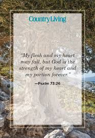 See more ideas about verses, bible verses, bible. 20 Encouraging Bible Verses About Strength Find Healing And Hope