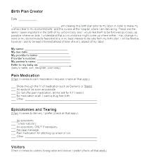 Online Birth Plan Creator My Birth Plan Template