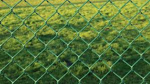 fence wire mesh fence green garden