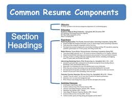Common Resume Components Section Headings ...