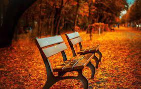 Autumn desktop wallpaper - Forever ...