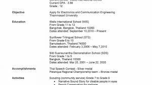 High School Resume Builder Resume Builder For High School Students EssayscopeCom 8