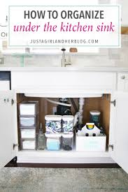 Home Organization  How To Organize Under The Kitchen Sink, Kitchen  Organization, Organized Kitchen