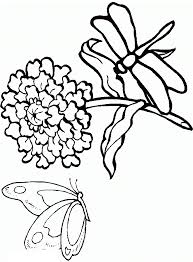 Small Picture Free Printable Dragonfly Coloring Pages For Kids
