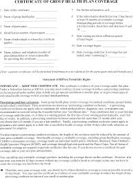Best Group Certificate Template Contemporary Examples Professional