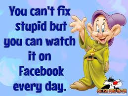 Stupid Funny Quotes Awesome You Can't Fix Stupid Pictures Photos And Images For Facebook