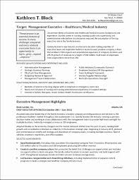 Best Executive Summary Microsoft Word Action Plan Template