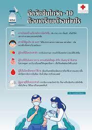 ฉีดวัคซีนโควิด-19 ต้องเตรียมตัวอย่างไร - สภากาชาดไทย