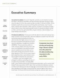 Example Summary Essay Summary Essay Example Beautiful Mapsingen Executive Summary