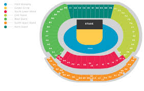 P Nk Hampden Park Stadium Pitch Standing