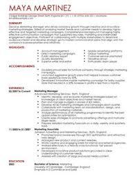Resume Template Marketing Professional Resume Templates