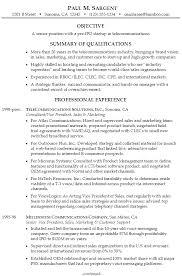Example Resume Senior Management Startup Telecommunications ...