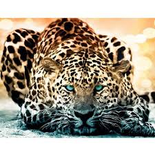 leopard wall pictures at affordable