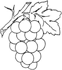 grapes clipart black and white. pin grape clipart coloring page #7 grapes black and white u