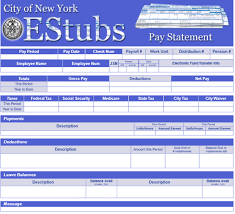Paycheck Calculator New York Pay Statement Explained Opa