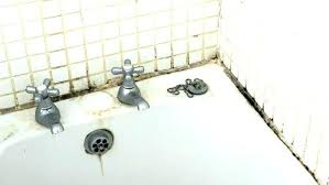 how to get rid of mold in shower grout how to get rid of mold in