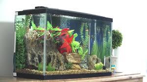 petco fish tanks. Wonderful Tanks And Petco Fish Tanks E