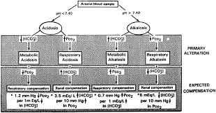 Evaluation Of The Newborns Blood Gas Status Clinical