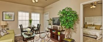 1 Bedroom Apartments San Antonio Tx Remodelling Interesting Decorating