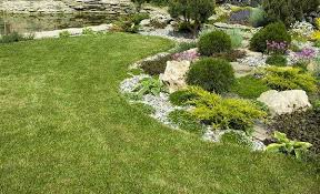 artificial turf yard. Exellent Yard For Artificial Turf Yard