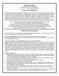 Project Manager Resume Examples Noc Manager Resume Sample Nfmoshu Com