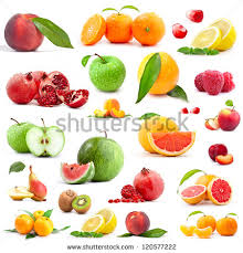 Group Of Fruit Trees