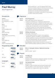 Sample Computer Programmer Resume Programming Resume Examples Kasta Magdalene Project Org