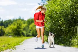 What does Responsible Pet Owner mean? - PetSecure