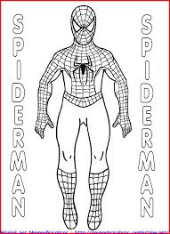 Dessin De Coloriage Spiderman Imprimer Cp24565