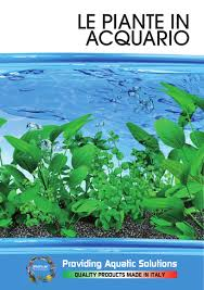 Le piante in acquario by prodac international issuu