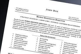 Professional Resume Stunning Nursing Resume Writing Service Best Nursing CV Writers