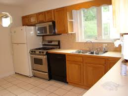 For Small Kitchens In Apartments Picture Kitchen Design For Apartments Waraby