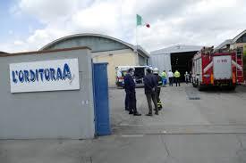 Luana D'Orazio è morta in un incidente sul posto di lavoro - Bigodino