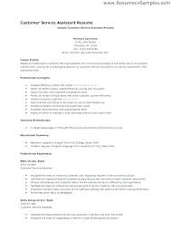 Ability Summary Resume Examples Of Resumes Qualifications Customer